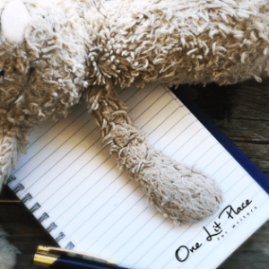 Stuffed bunny lying across a One Lit Place notebook on a wood table