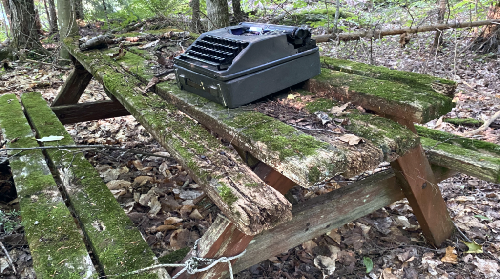 typewriter on moss-covered picnic table in woods